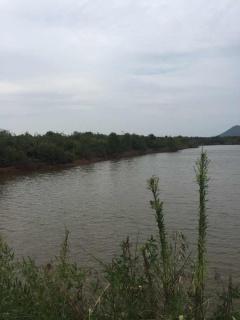 066 L 江西南昌1000亩灌木林地转让