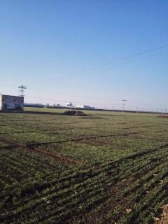 河北石家庄130亩工业用地转让