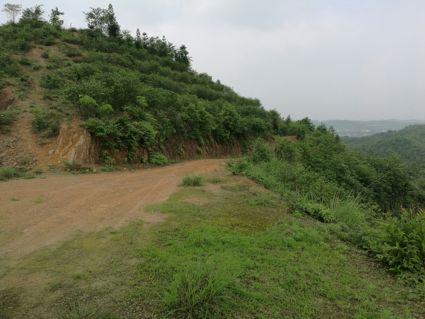 湖南浏阳2000亩其它林地转让