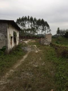 惠州  博罗 1400平米 农场 转让