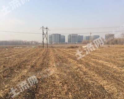 620北京海淀区320亩水浇地出租