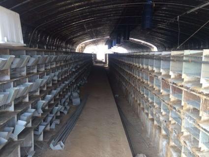 (255)青岛黄岛区胶南附近30亩养殖用地转让