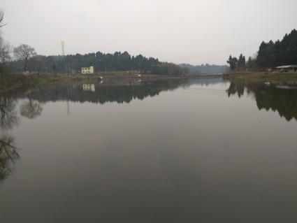 简阳318国道旁 50余亩水面转包