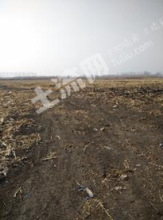 急急急长春德惠市35亩种养殖农场低价转让