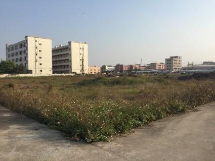 博罗县园洲镇180平方住宅用地出售