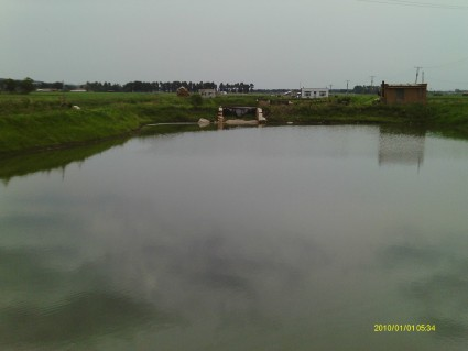 长春  九台区 40亩 水产养殖用地 转让