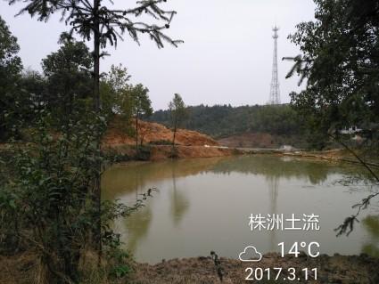 株洲株洲县 1200平米 宅基地 转让
