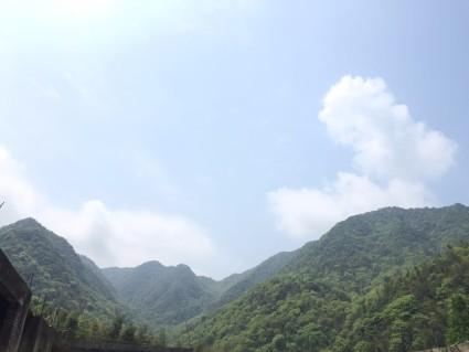 九江武宁县61121亩有林地低价转让,欲购从速