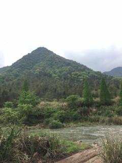 九江武宁县6525亩有林地转让,风景极好