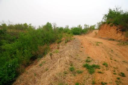 大连普兰店市 沙包镇 20亩 荒山 转让 15万元