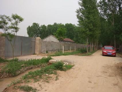 济阳县仁风镇28亩农业养殖基地对外出租(水电路网房屋齐全)