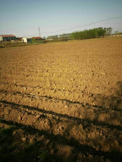 长春绿园区30亩荒地转让