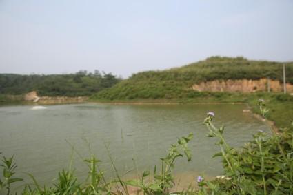 江门市开平4374亩大型种养殖农场低价出租/转让