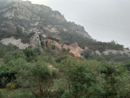 1406石家庄井陉矿区 50亩 有林地 转让