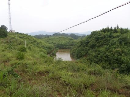 长沙浏阳市480亩林地出租