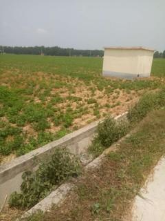 信阳息县1000亩水浇地出租,650元/亩/年