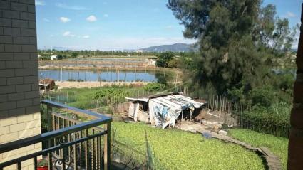 漳州龙海市14亩鱼塘出租