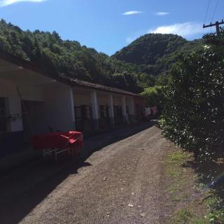 抚州临川区40亩养猪场转让
