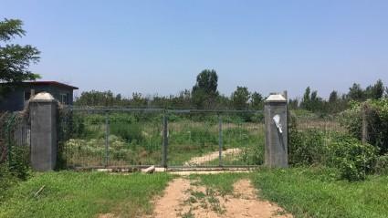 青岛即墨70亩其他用地/农场转让