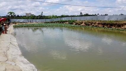 海南海口20亩农场转让