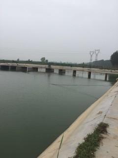 新乡南环附近50亩农家乐及水产养殖设施用地转让XX805