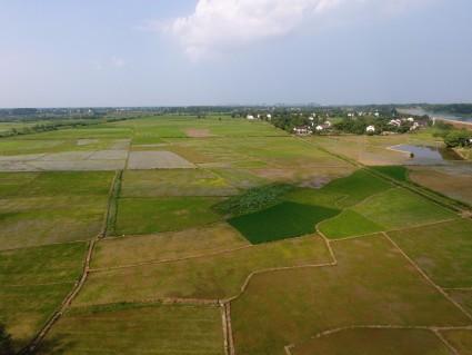 湖南常德500亩水田出租