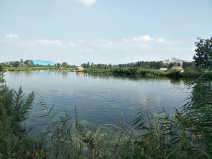 徐州铜山区47亩设施农用地转让