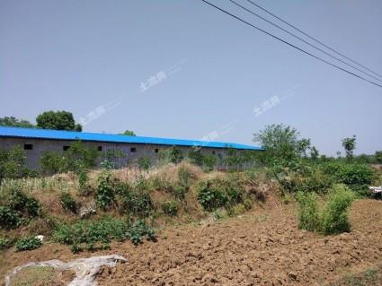 巴彦淖尔临河区140亩综合养殖用地转让