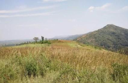 洛阳伊川县2000亩荒山转让 面议
