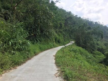 云浮新兴县1200亩山林地转让