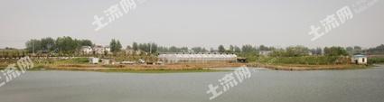 南京六合区60亩综合养殖用地转让