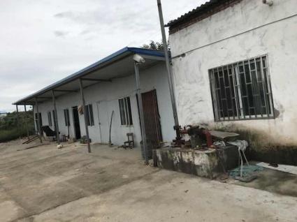 洛阳孟津县110亩农场转包