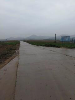 河南洛阳1000亩水浇地出租