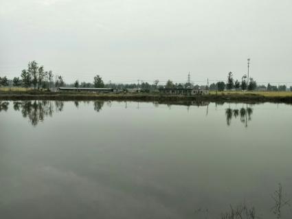 徐州铜山区70亩农家乐出租