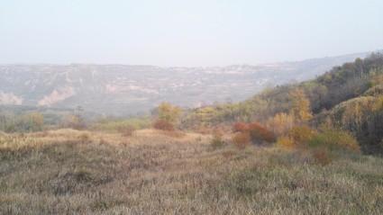 西安  临潼区 400亩 荒山 转让