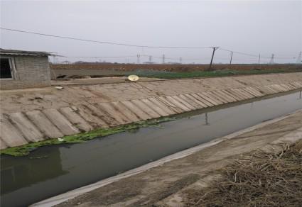 黄冈黄州区200亩水浇地出租