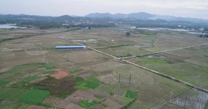 广西钦州888亩水田出租
