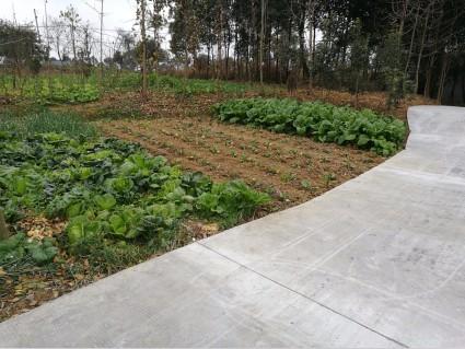 天府大道南沿线旁3亩宅基地带4亩耕地整体对外转让或合作经营