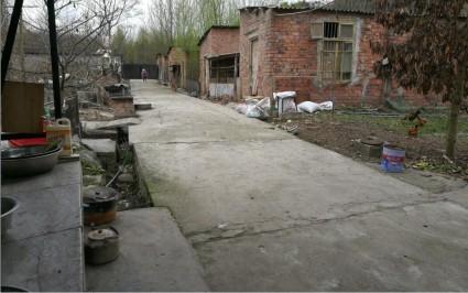 新津永商镇附近60余亩农场整体出租或转让