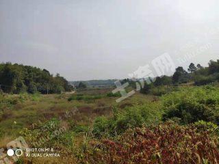湘潭湘潭县800亩旱地出租XT36004