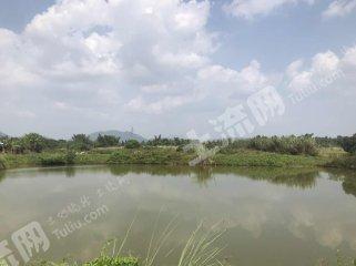 广东/惠州/惠东县4亩综合养殖用地出租