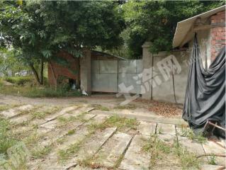 青白江清泉镇附近16亩综合养殖场地整体转让
