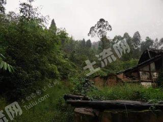 重庆渝北区古路镇150平米宅基地出租