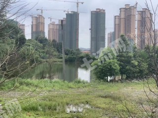 惠州博罗县郊区68亩休闲农庄出租
