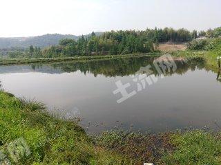 湖州100亩水产养殖用地转让 进出水方便 适合龙虾螃蟹,鳜鱼等