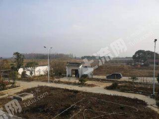 武汉东西湖区10亩农庄出租或出售