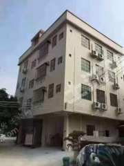广州南沙区120平米宅基地转让