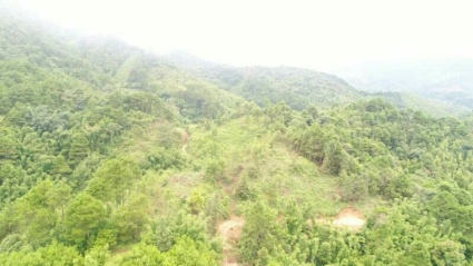 南宁兴宁区1000亩林地荒山出租