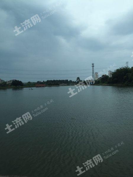 博羅縣橫河鎮20畝坑塘有鵝棚其他設施出租