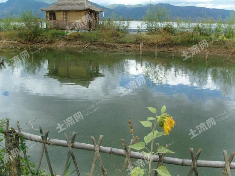 惠州  博羅 85畝 魚塘 轉讓